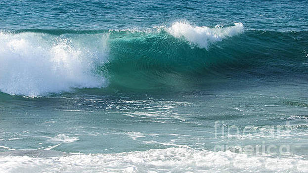 Tropical Treasure Coast Florida Seascape Wave 99 by Ricardos Creations