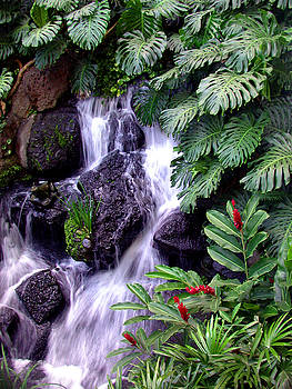 Tropical Waterfall in Hawaii by Janice Paige Chow