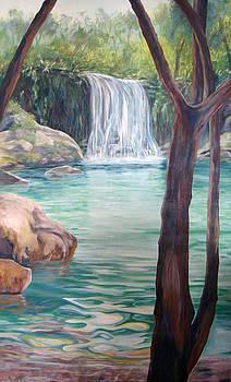 Tropical Waterfall by Nancy Isbell