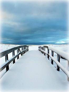 Tropical Winter Paradise by Kiersten Mitchell
