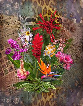 Tropical Wonders by Hanny Heim
