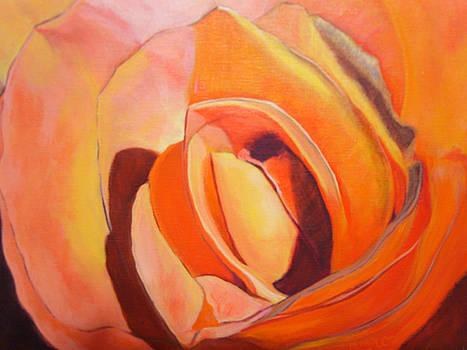 Tropicana Rose by Marcia  Hero