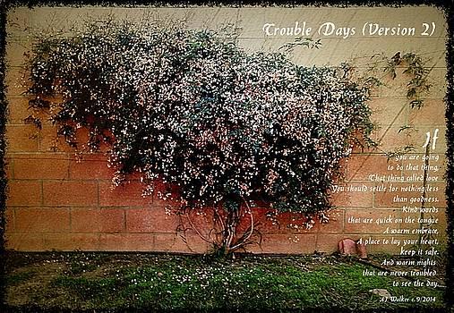 Trouble Days Version 2 by AJ Walker