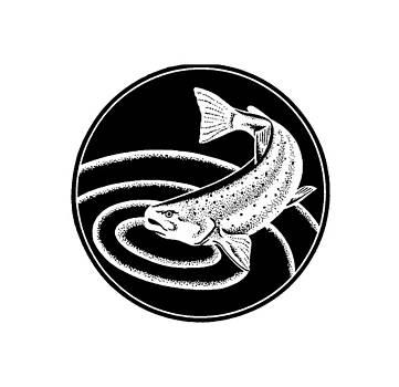 rd Erickson - Trout - tee shirt trout