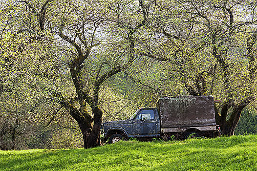 Truck In Spring Orchard by Alan L Graham