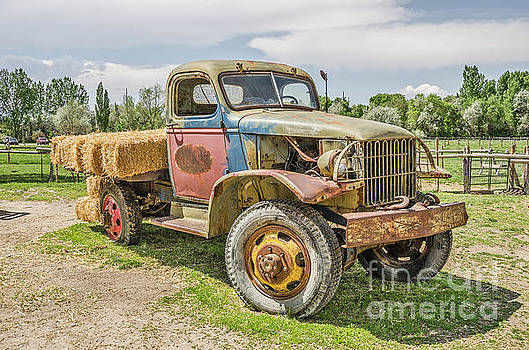 Truck of Many Colors by Sue Smith