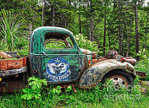 Truck Planter Crow Creek by Diane E Berry