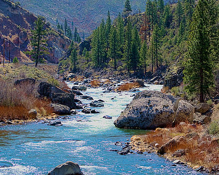 William Havle - Truckee River Floristine