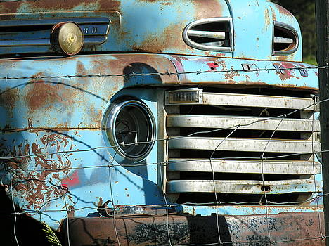 Trucks Life by Diane Greco-Lesser