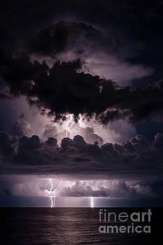 True Demensions of a Storm by Quinn Sedam