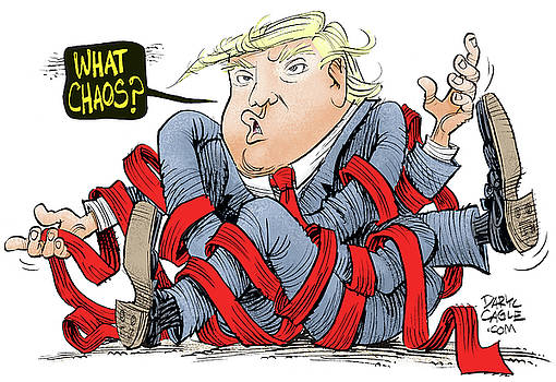 Trump Chaos by Daryl Cagle