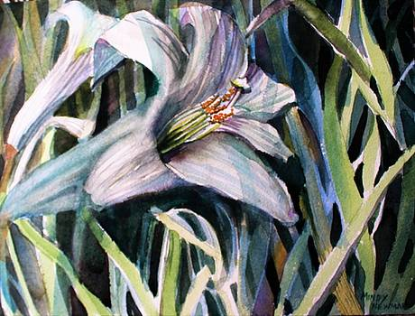 Trumpet Lily by Mindy Newman