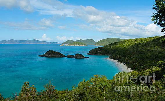 Julia Rigler - Trunk Bay Beach II St. John
