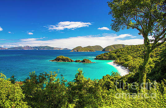 Trunk Bay Paradise by Kasia Bitner