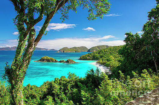 Trunk Bay Serenity by Mariola Bitner