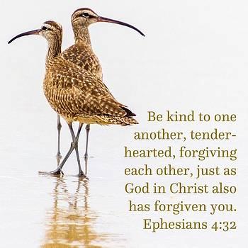 Try A Little Kindness by Randy Bayne