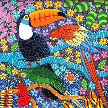 Tucano, arara e papagaio by Militao Dos Santos Militao