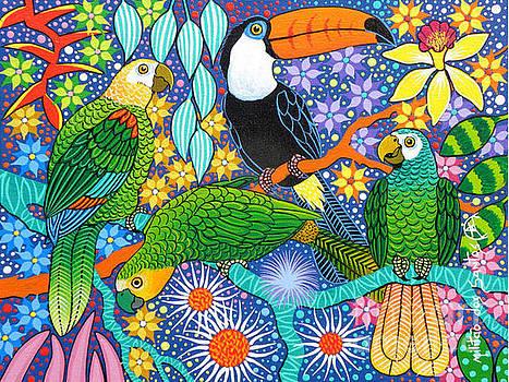 Tucano e Papagaios by Militao Dos Santos Militao