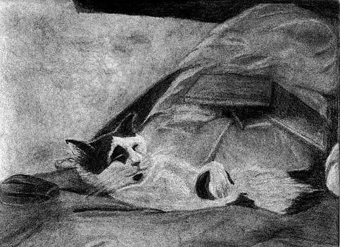 Tucked In by Wendy Keely