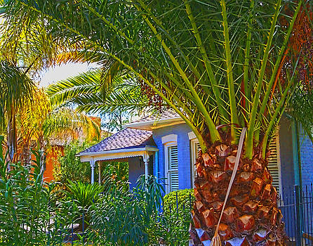 Tucson Blue House by Bruce Wood
