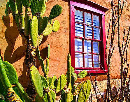 Tucson Red Window 4 by Bruce Wood