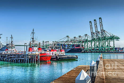 Tug Boats and Gantry Cranes  by David Zanzinger