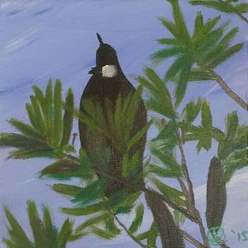 Tui Call by Amy Jayne Roper