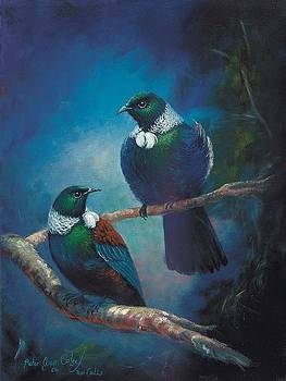 Tui Calls by Peter Jean Caley
