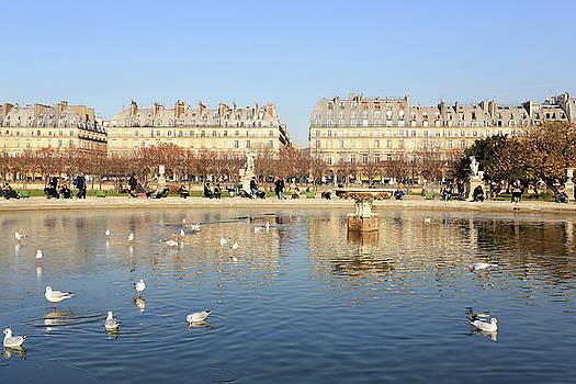 Tuileries Garden in winter by Virginie Blanquart