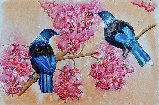 Tui's in Spring Blossom by Carolyn Judge
