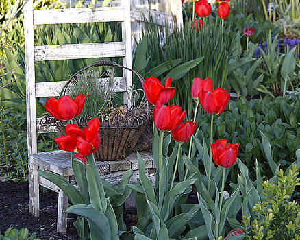 Tulip Chair by Kelly S Andrews