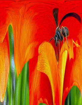 Tulip by Elaine Somers