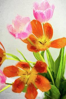 Tulip Explosion 2 by Shari Whittaker