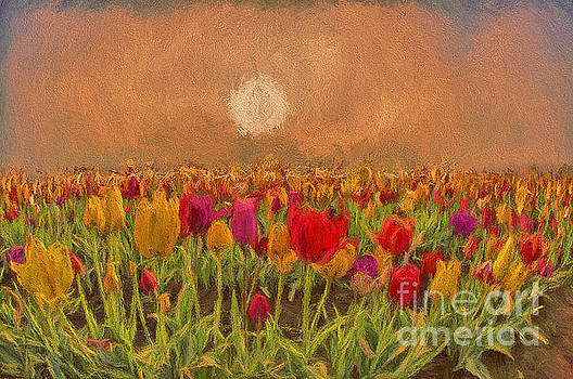 Tulip Field 1 by Billie-Jo Miller