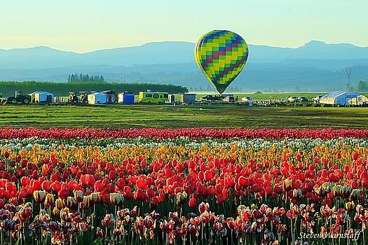 Tulip Field and Hot Air Balloon by Steve Warnstaff