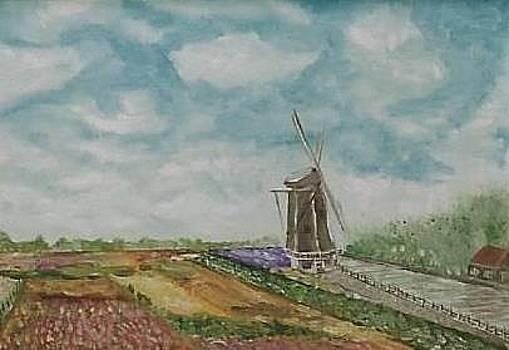 Ilona MONTEL - Tulip Fields in Holland