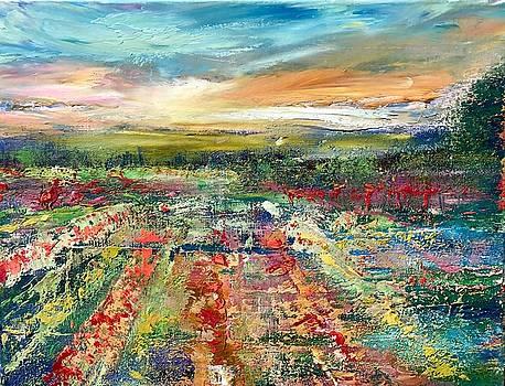 Tulip Fields  by Julia S Powell