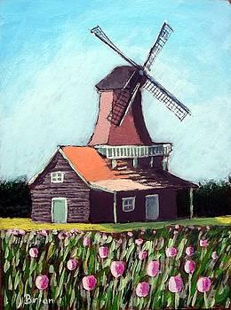Tulip garden with windmill by Brian Van der Spuy