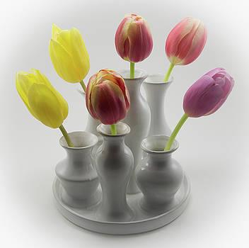 Tulip Grouping by Greg Thiemeyer