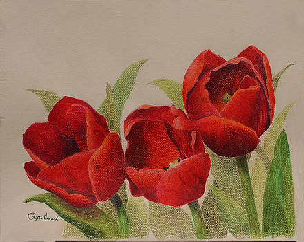 Phyllis Howard - Tulip Trio