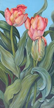 Tulip Twirl by Rita-Anne Piquet