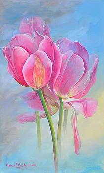 Tulipes New-Age by Muriel Dolemieux