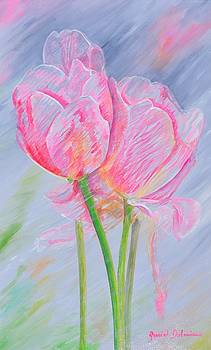 Tulipes rayees by Muriel Dolemieux