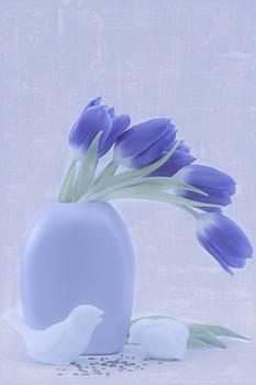 Sandra Foster - Tulips And Birdies