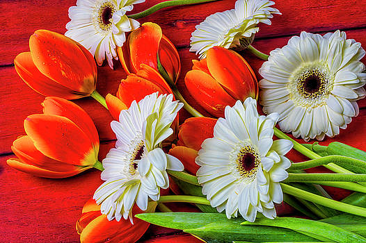 Tulips And Daisies by Garry Gay