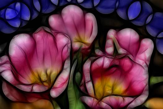 Kevin  Sherf - Tulips for My Sweetie.