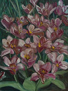 Tulips from Holland by Kathy Knopp