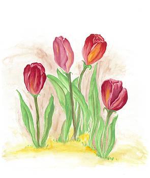 Tulips  by Ila Patel