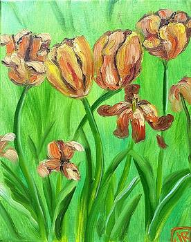 Tulips by Julie Ross