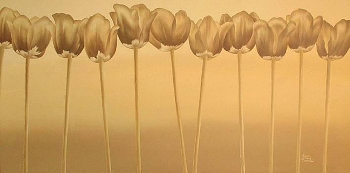 Tulips by Karen Coombes
